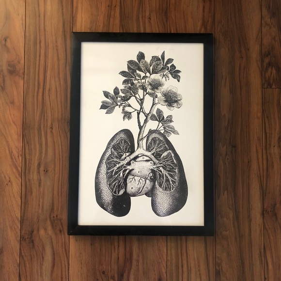 Anatomy Print Blooming Heart and Lungs Framed Art